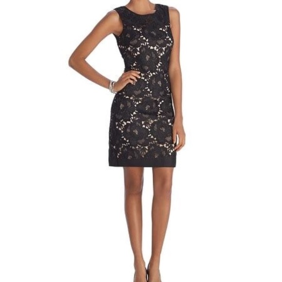 60748afc62a2b Iconic Starlet Sleeveless Lace Overlay Shift Dress.  M 5aa8250ca6e3ea6539ca4135. Other Dresses you may like. White House Black  Market ...